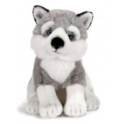 Soft toy Dog Siberian Husky Plush & Company 15753