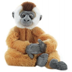 Soft Toy Monkey Gibbon Plush & company 15822