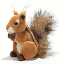 Soft Toy American Squirrel Plush & Company 15893