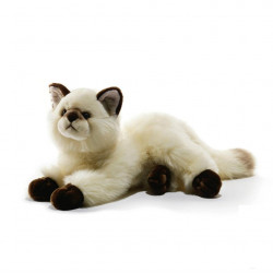 Soft toy Cat Siamese Plush & Company 05935
