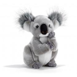 Soft Toy Koala Plush & Company 15747